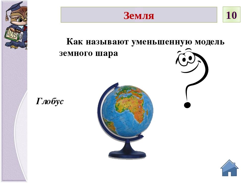 Юг Если встать лицом на запад, то какая сторона будет слева Земля 20 С З Ю