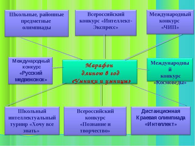 Международный конкурс «Русский медвежонок»