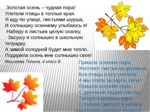 Золотая осень – чудная пора! Улетели птицы в теплые края. Я иду по улице, ли