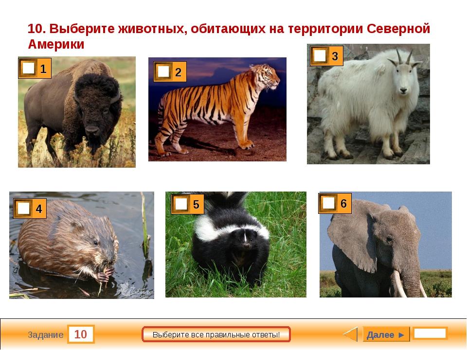 10 Задание Выберите все правильные ответы! 10. Выберите животных, обитающих н...