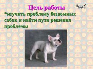 Цель работы *изучить проблему бездомных собак и найти пути решения проблемы
