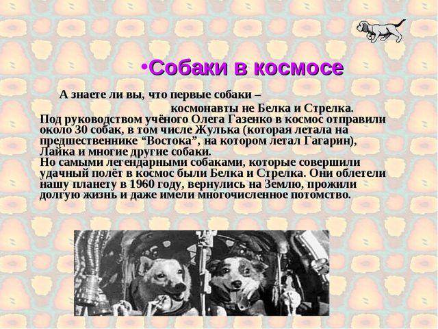 А знаете ли вы, что первые собаки – космонавты не Белка и Стрелка. Под руков...