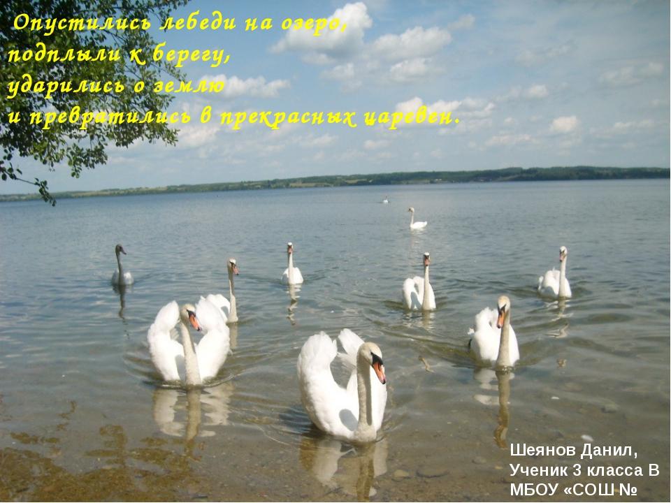 Опустились лебеди на озеро, подплыли к берегу, ударились о землю и превратил...