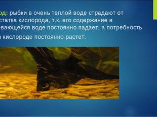 Вывод: рыбки в очень теплой воде страдают от недостатка кислорода, т.к. его с