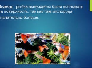 Вывод: рыбки вынуждены были всплывать на поверхность, так как там кислорода з