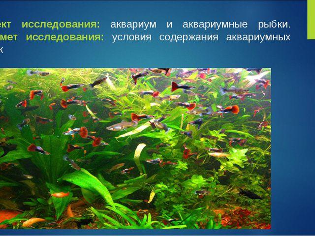 Объект исследования: аквариум и аквариумные рыбки. Предмет исследования: усло...