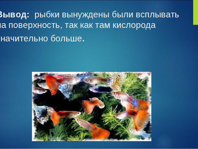 Вывод: рыбки вынуждены были всплывать на поверхность, так как там кислорода з...
