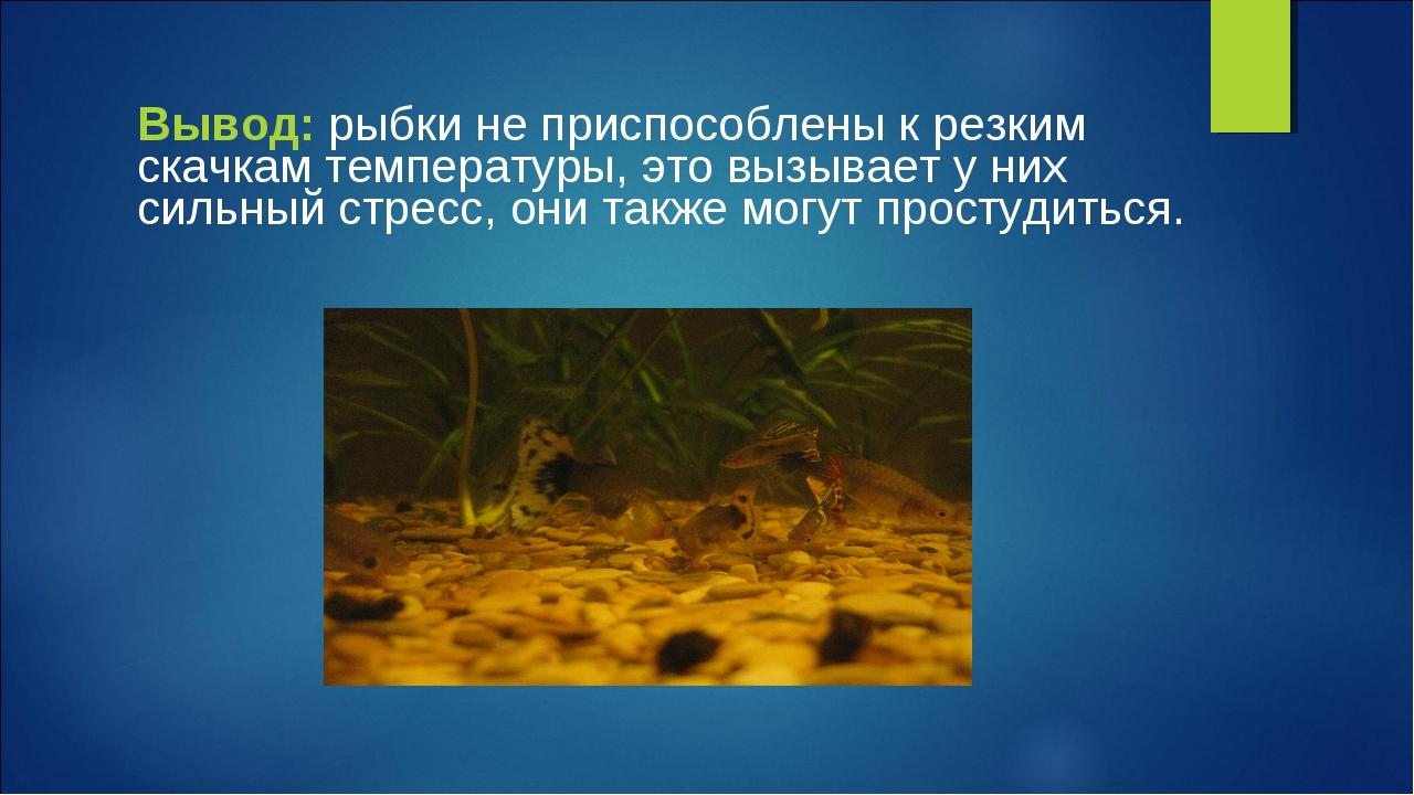 Вывод: рыбки не приспособлены к резким скачкам температуры, это вызывает у ни...