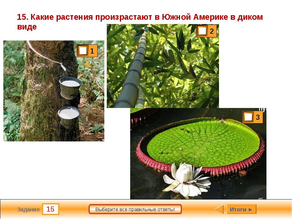15 Задание Выберите все правильные ответы! 15. Какие растения произрастают в...