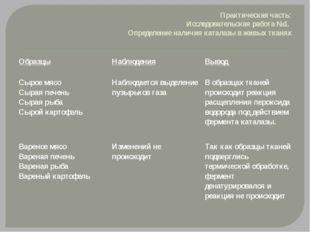 Практическая часть: Исследовательская работа №1. Определение наличия каталазы