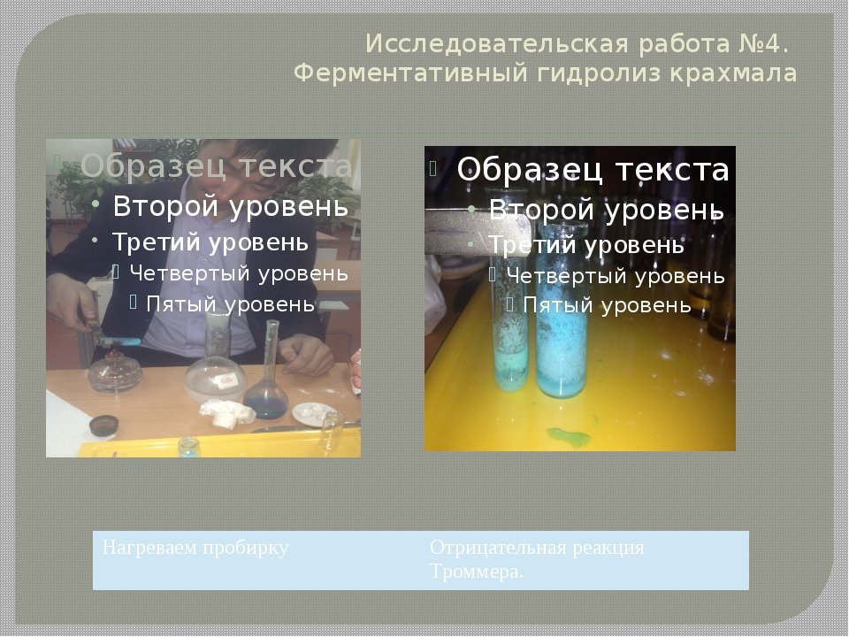 Исследовательская работа №4. Ферментативный гидролиз крахмала Нагреваем проби...