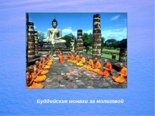 Буддийские монахи за молитвой