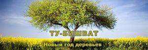http://im0-tub-ru.yandex.net/i?id=181640180-18-72&n=21