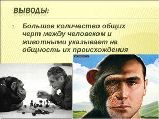 Большое количество общих черт между человеком и животными указывает на общнос