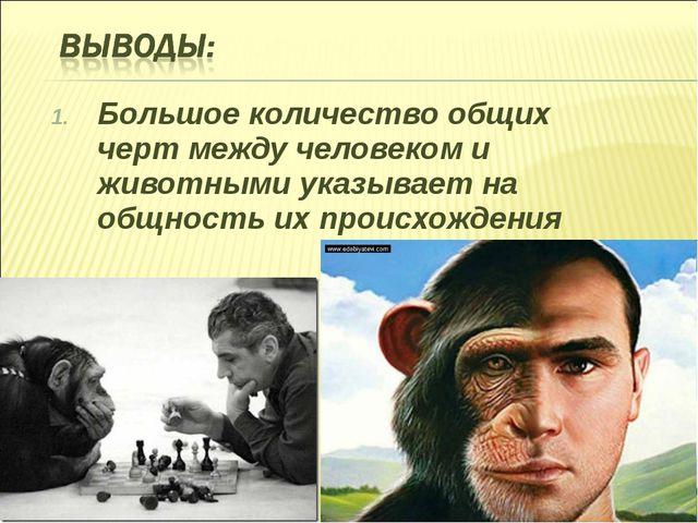 Большое количество общих черт между человеком и животными указывает на общнос...