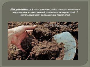 Рекультивация - это комплекс работ по восстановлению нарушенных хозяйственной