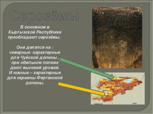 В основном в Кыргызской Республике преобладают серозёмы. Они делятся на : сев