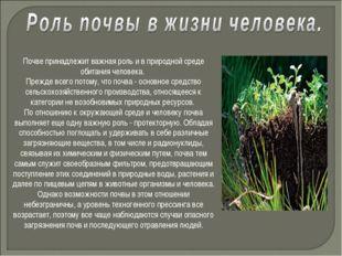 Почве принадлежит важная роль и в природной среде обитания человека. Прежде в