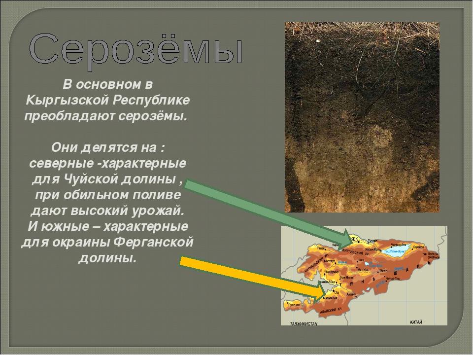 В основном в Кыргызской Республике преобладают серозёмы. Они делятся на : сев...