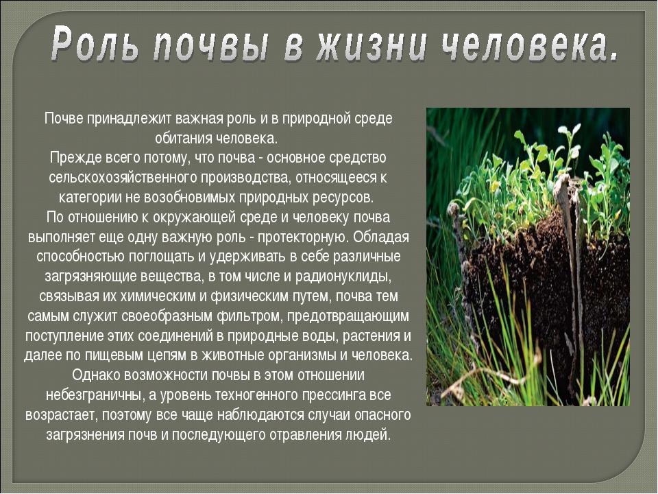 Почве принадлежит важная роль и в природной среде обитания человека. Прежде в...