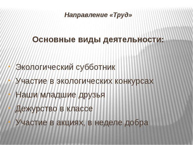 Направление «Труд» Основные виды деятельности: Экологический субботник Участи...