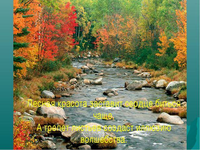 Лесная красота заставит сердце биться чаще, А трепет листьев создаст иллюзию...