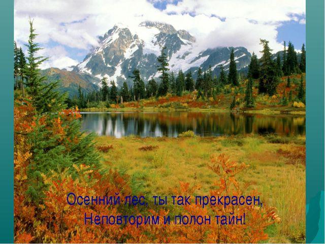 Осенний лес, ты так прекрасен, Неповторим и полон тайн!