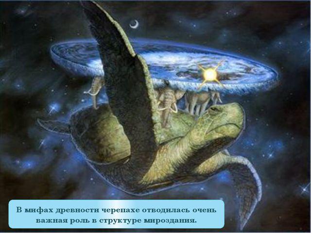 В мифах древности черепахе отводилась очень важная роль в структуре мироздания.