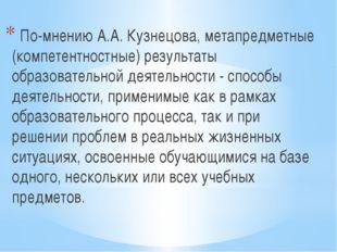 По-мнению А.А. Кузнецова, метапредметные (компетентностные) результаты образ