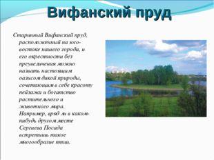 Вифанский пруд Старинный Вифанский пруд, расположенный на юго-востоке нашего
