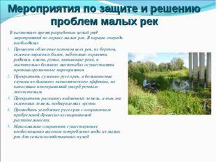 Мероприятия по защите и решению проблем малых рек В настоящее время разработа