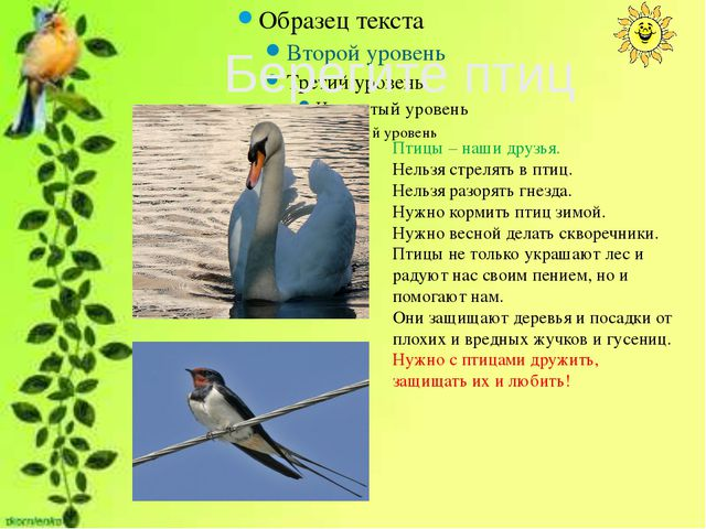 Птицы – наши друзья. Нельзя стрелять в птиц. Нельзя разорять гнезда. Нужно к...
