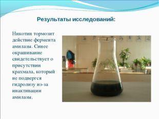 Результаты исследований: Никотин тормозит действие фермента амилазы. Синее ок