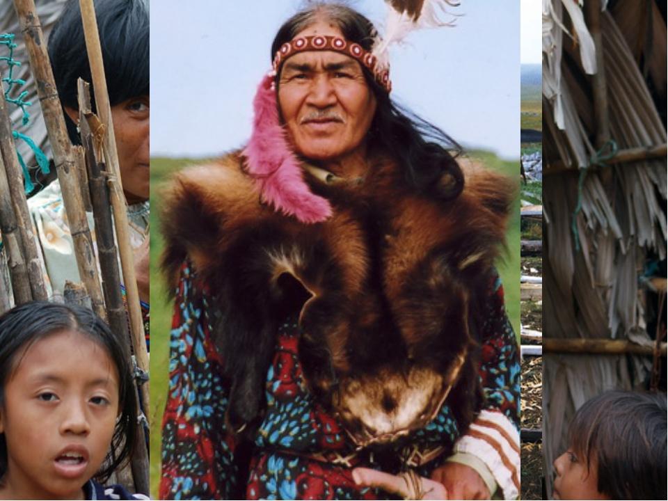 В современном населении выделяются несколько основных этнических групп: амери...
