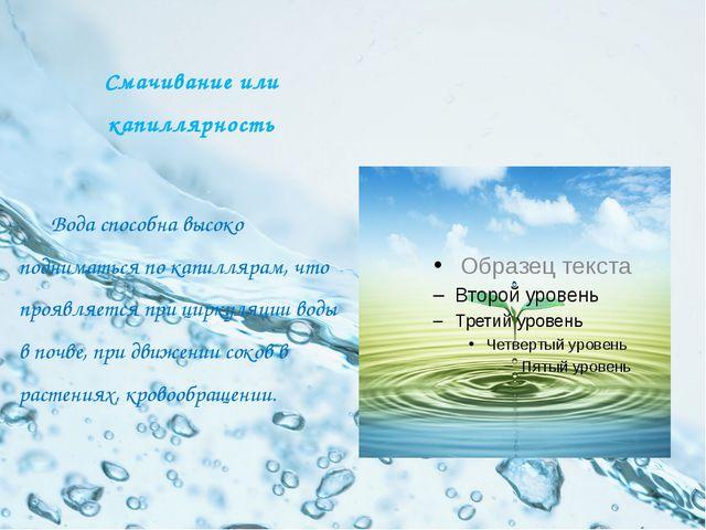 Смачивание или капиллярность Вода способна высоко подниматься по капиллярам,...