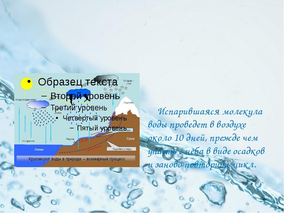 Испарившаяся молекула воды проведет в воздухе около 10 дней, прежде чем упас...