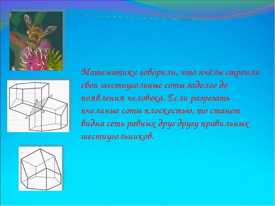 Математики говорили, что пчёлы строили свои шестиугольные соты задолго до поя...