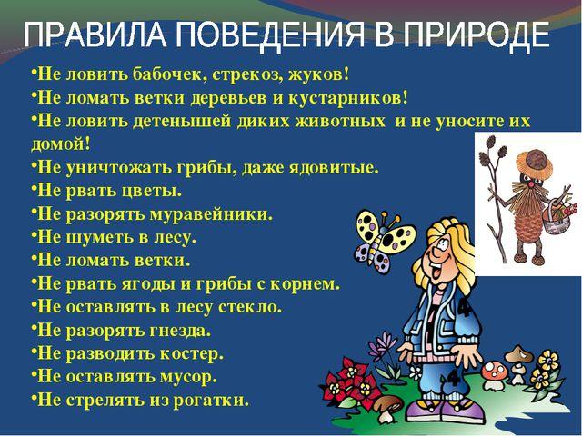 Не ловить бабочек, стрекоз, жуков! Не ломать ветки деревьев и кустарников! Не...