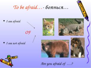 To be afraid…- бояться… I am afraid OF 			 I am not afraid Are you afraid of …?