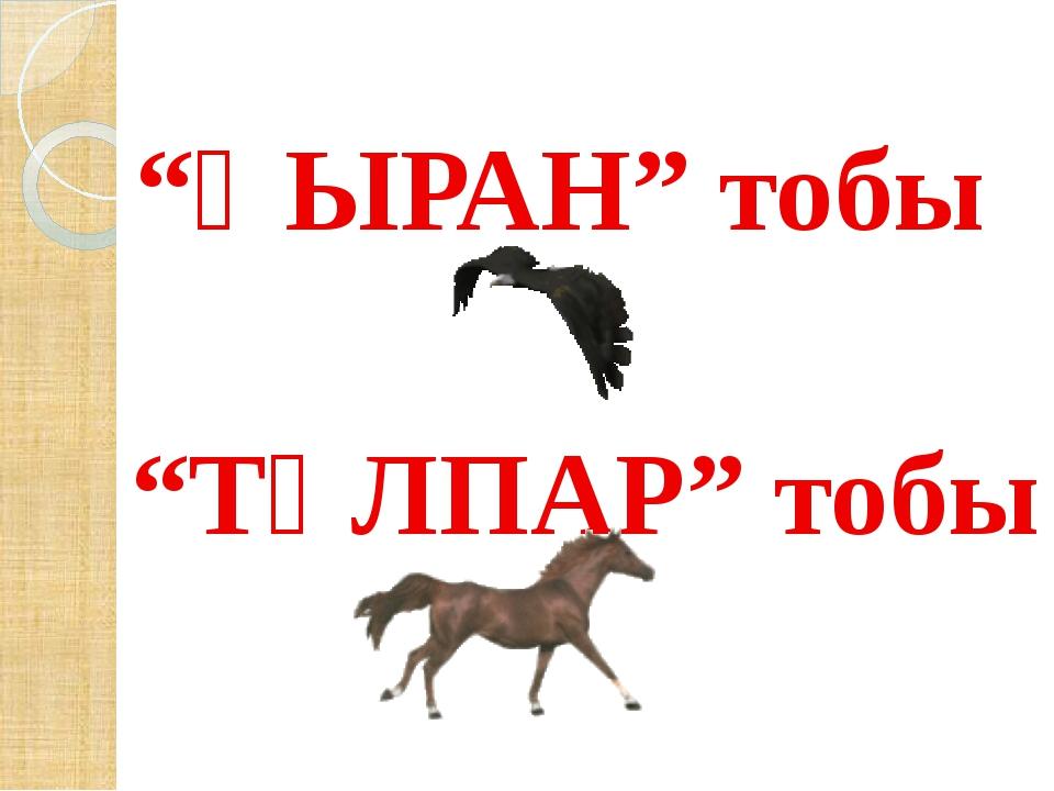 """""""ҚЫРАН"""" тобы """"ТҰЛПАР"""" тобы"""