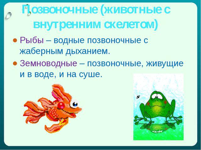 Позвоночные (животные с внутренним скелетом) Рыбы – водные позвоночные с жабе...