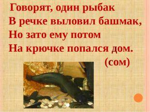 Говорят, один рыбак В речке выловил башмак, Но зато ему потом На крючке попа