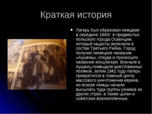 Краткая история Лагерь был образован немцами в середине 1940г. в предместье п