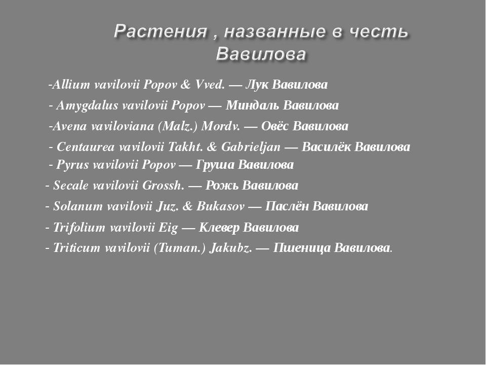 -Allium vavilovii Popov & Vved. — Лук Вавилова - Amygdalus vavilovii Popov —...