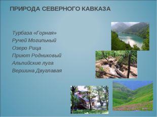 ПРИРОДА СЕВЕРНОГО КАВКАЗА Турбаза «Горная» Ручей Могильный Озеро Рица Приют Р