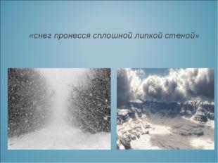 «снег пронесся сплошной липкой стеной»