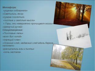 Метафора: «ущелье соблазняло» «Светились леса» «сумрак поглотил» «чистые и св