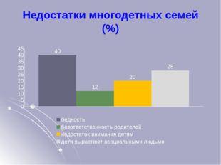 Недостатки многодетных семей (%)