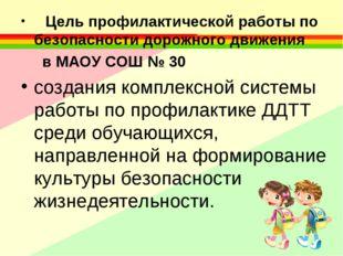 Цель профилактической работы по безопасности дорожного движения в МАОУ СОШ №