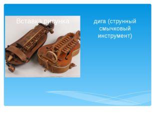 дига (струнный смычковый инструмент) Васильева В.Н. СОШ № 34 Набережные Челны